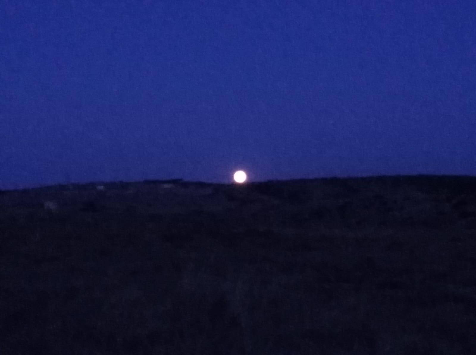 25-lalba-della-luna